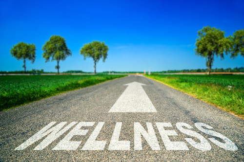 chiropractic health wellness