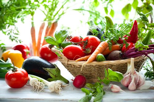 chiropractic vegan versus vegetarian
