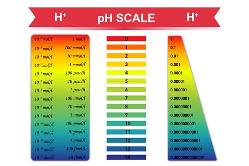 chiropractic acid versus alkaline