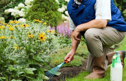 gardening and chiropractic